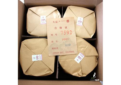 Мэнхай ДаИ «7592» (2019 год)